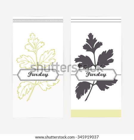 Parsley seasoning. Hand drawn branch with leaves in outline and silhouette style. Spicy herbs retro labels collection for food packaging or kitchen design. Vector illustration - stock vector