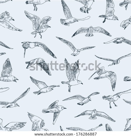 pattern of seagulls - stock vector