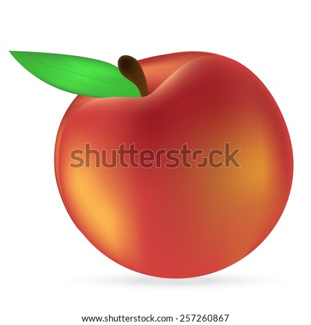 peach on a white background - stock vector