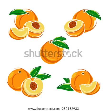 Peach set. Vector - stock vector