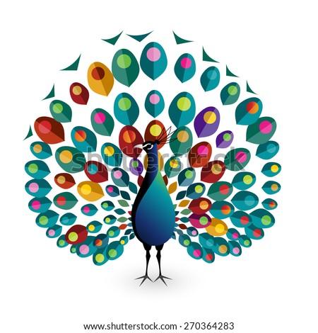 Peacock, eps10 vector - stock vector