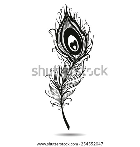 Peacock feather isolated black in background. Vector - stock vector