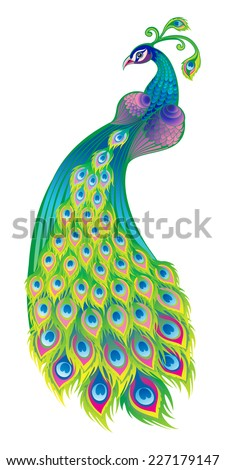 Peacock's tail. The background is white. - stock vector