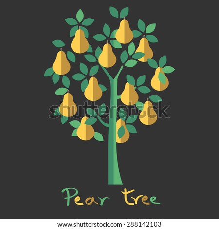 Pear tree. Yellow pears vector illustration. - stock vector