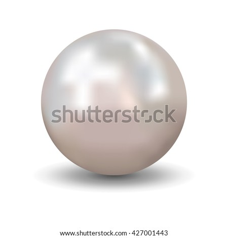 Pearl isolated on white background - stock vector