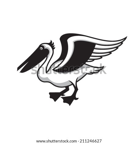 Pelican on white background. - stock vector