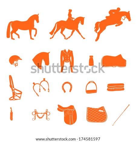 Perfect equine icon set drawn in vector. - stock vector
