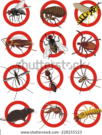 pests icon - color - stock vector
