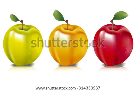 Photo realistic illustration of colorful apples represented in yellow, green and red colors, arranged in a row. - stock vector