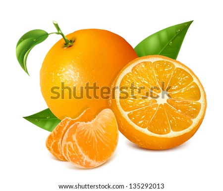 Photo-realistic vector illustration. Fresh oranges fruits with green leaves and slices. - stock vector