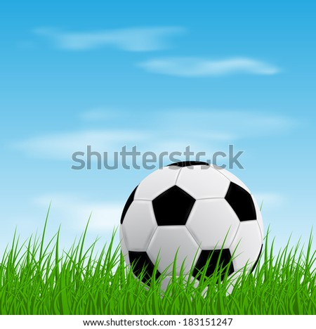picture of a soccer ball on grass, vector eps 10 illustration - stock vector