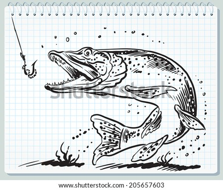 Pike fish and lure  - stock vector