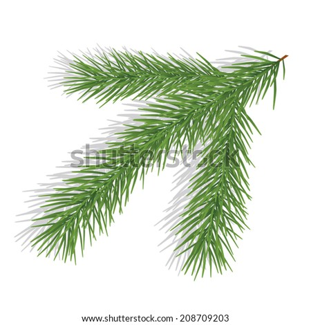 Pine branch isolated on white. Vector illustration - stock vector