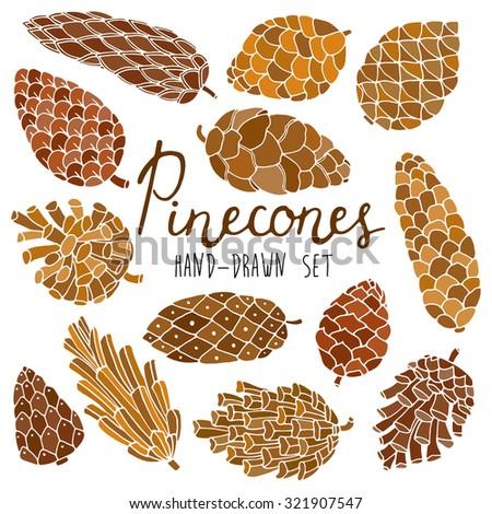 Pine cones set - stock vector