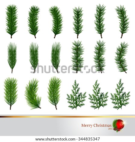 pine tree,Branch of Christmas tree with pine cones,pine tree,Pine branch isolated on white. Vector illustration,illustration with pine branches isolated on white background - stock vector