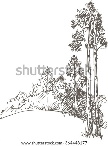 pine trees and bushes drawing by pencil, sketch of wild nature, forest doodle, hand drawn vector illustration - stock vector