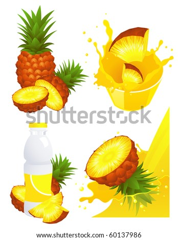 Pineapple products, vector illustration - stock vector