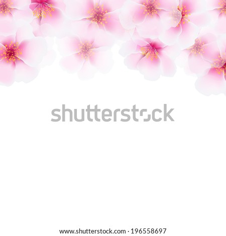 Pink Cherry Flower Border, With Gradient Mesh, Vector Illustration - stock vector