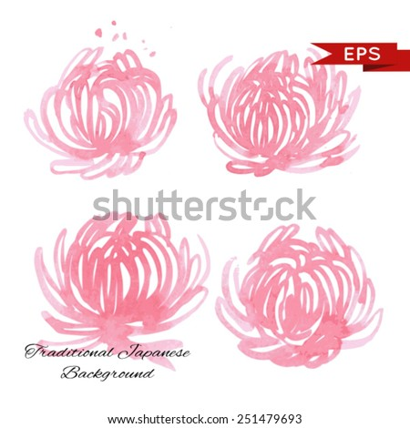Pink chrysanthemum illustration isolated set.  Vector image. - stock vector