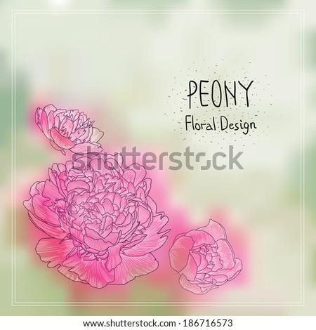 Pink Peonies Vector Background. Romantic Floral Illustration. Beautiful Summer Season Card. - stock vector