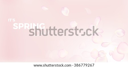 pink rose petals in soft color and blur style vector background with text it's spring day - stock vector
