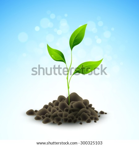 Plant sapling growing. Vector illustration EPS 10 - stock vector