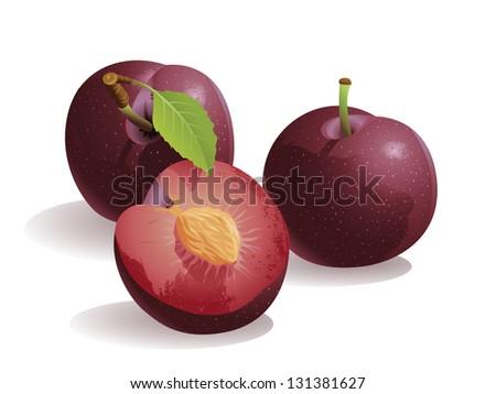 Plum, Isolated Vector Fruit - stock vector