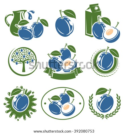 Plum labels and elements set. Vector - stock vector