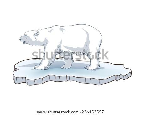 polar bear. Hand drawn illustrations. Vector sketch - stock vector