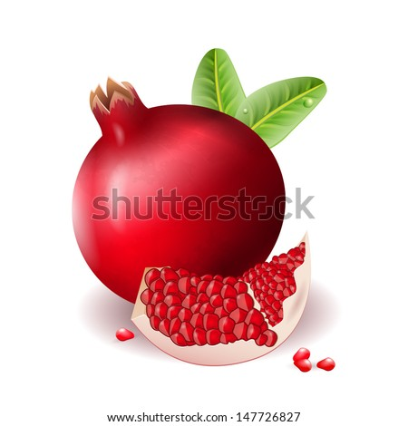 pomegranate icon can be used for website decoration, icon or holiday design - stock vector