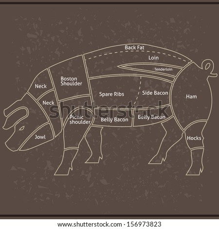 Pork or pig cuts in vector - stock vector