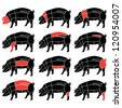 Pork or pig meat cuts - stock vector