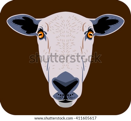 Portrait of a sheep  - stock vector