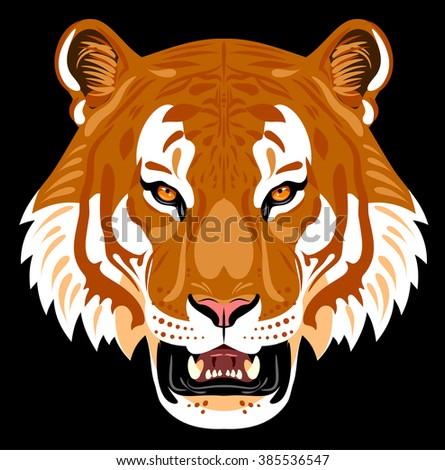 Portrait of golden tiger muzzle - stock vector