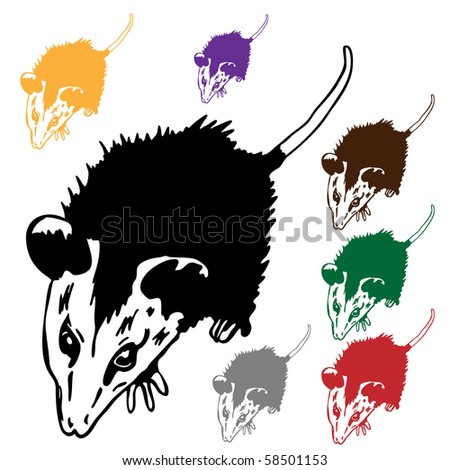 possum - stock vector