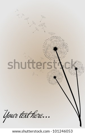 Post card with dandelions and space for text - stock vector