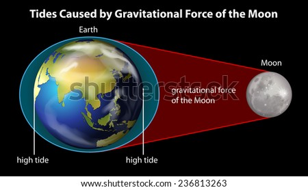 Poster explaining cause of tides by gravitational force - stock vector