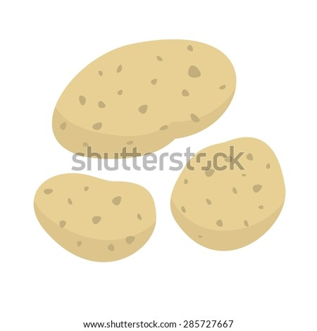 Potatoes. Vector illustration - stock vector