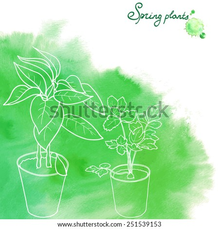 Potted seedlings drawn with white outlines on green watercolor abstract background. Seedlings of bell pepper and celery. Vector illustration. - stock vector