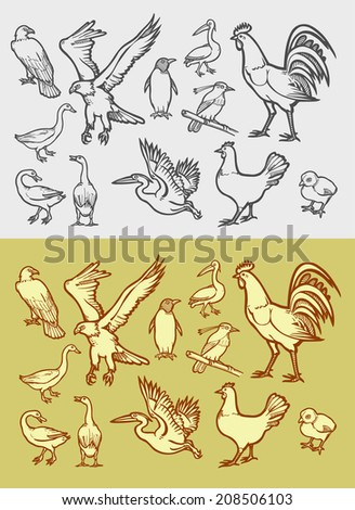 Poultry icons sketch. Black and white transparent drawing and vintage color style. Good to use for website icons, symbols, or any design. - stock vector