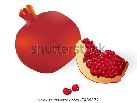 Ppomegranates. Vector. - stock vector