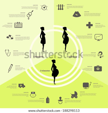 Pregnancy and birth infographics and pregnancy stages. Icon vector set. - stock vector