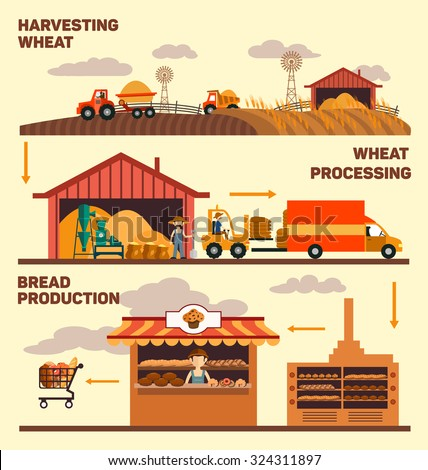 Production of bread, harvest, processing of grain, grain products for sale, vector illustration Factory and the production of bread, isolated - stock vector