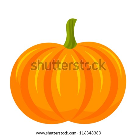 Pumpkin fruit over white. Vector illustration - stock vector