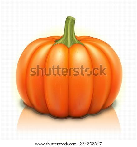 Pumpkin Illustration >Part 1/3< Whole  - stock vector