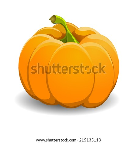 Pumpkin isolated on white. Realistic vector illustration. - stock vector