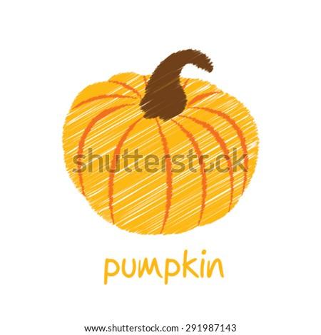 pumpkin, sketch design vector - stock vector