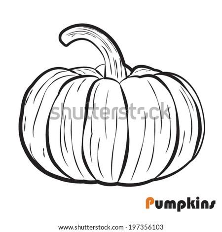 Pumpkin, vector Illustration   - stock vector