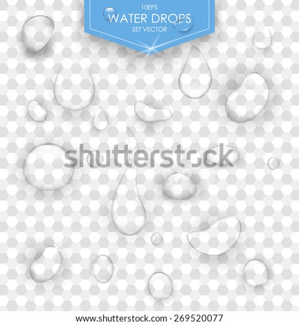Pure clear water drops realistic set isolated vector illustration. Transparent water drop. - stock vector