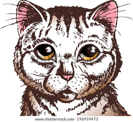 pussycat with big yellow eyes looking straight at you - stock vector